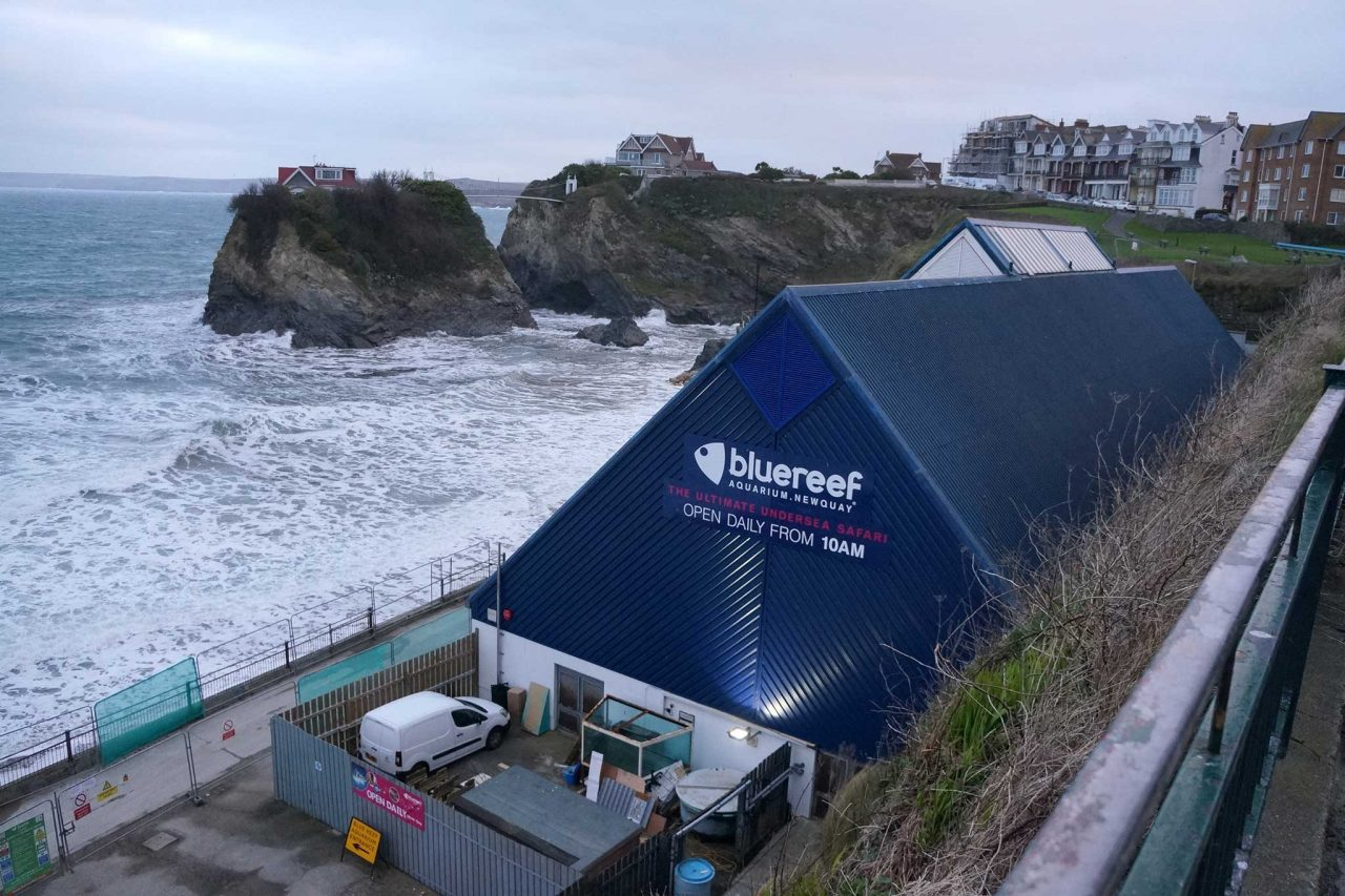 Bluereef Aquarium in Newquay, Cornwall (Photo: Ian S [CC BY-SA 2.0])
