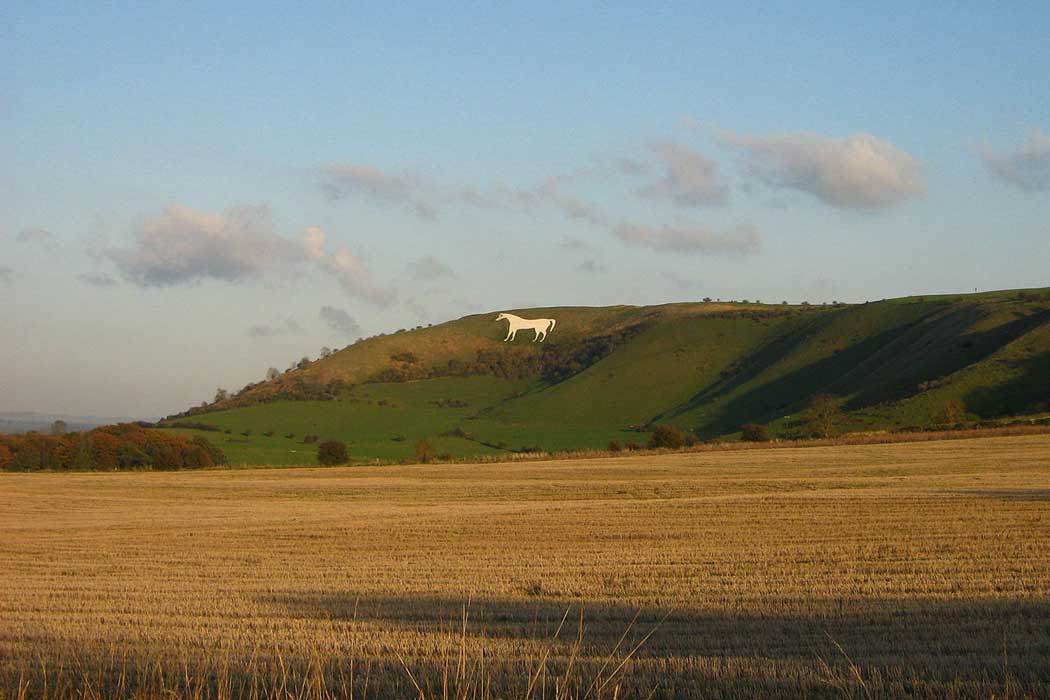 The Westbury White Horse can be seen from up to 26km (16 miles) away. (Photo: Jethrothompson [CC BY-SA 3.0])