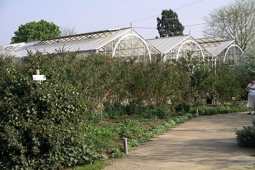 Greenhouses at the Stratford Butterfly Farm simulate a tropical environment. (Photo: Snowmanradio [CC BY-SA 3.0])